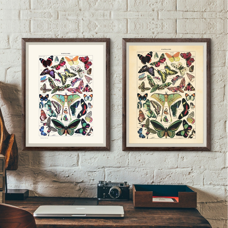 Vintage Butterfly Canvas Painting Home Decor