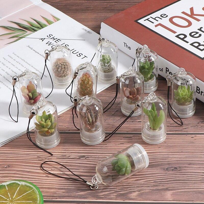 Сделай Сам Подвеска для суккулента кактус миниатюрный суккулент кактус Террариум живой случайный стиль домашний декор 2,5*5 см