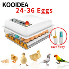 24-36 egg incubator chicken brooder incubator automatic poultry equipment egg incubator fully automatic incubator automatic 110V