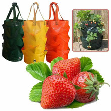 Bags Planting-Growing-Bag Grow-Planter Container Garden-Supplies Strawberry 3-Gallons