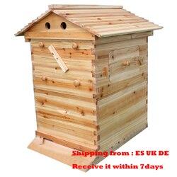 Automático casa de colméia com 7 pces fluxo pente mel madeira colméia quadros kit tubos colheita apicultura plástico ferramentas apicultor