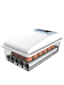 Warm Cubic Intelligent Eggs Incubator China Automatic Water Bed Chicken Thermostat for  Incubadora  36-196