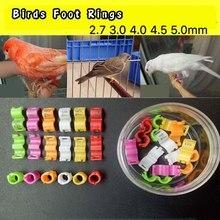20Pcs Canary Clip Ring Bird Pigeon Small Parrot Leg Rings Birds Foot Rings Bird Clip Ring Inner diameter 2.7mm 3mm 4mm 4.5mm 5mm