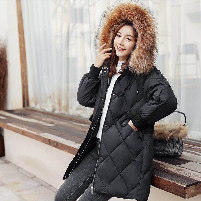 Winter Coat Female Thick Warm Duck Down Jacket Large Raccoon Fur Clothes 2019 Korean Fit Women's Down Jacket Hiver LW1579