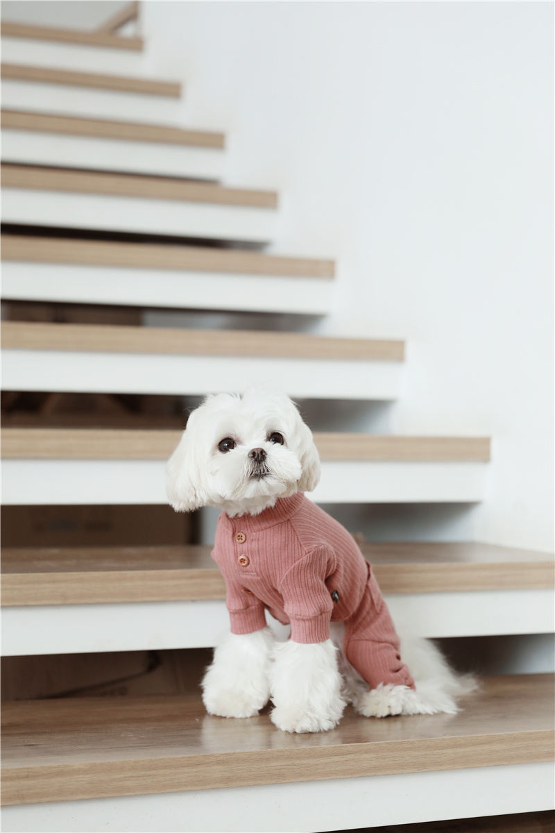 small puppy jumpsuit four legs (19)