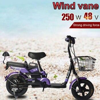 Fat Bike-Bicicleta eléctrica para Adulto, 250W, 48V, plegable, de montaña