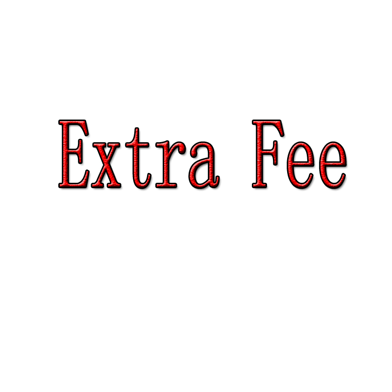 Dropshipping fast payment (Extra Fee) We will deliver the goods to you