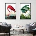 Современный тип животных фламинго и зеленый журавль настенные постеры и фрески в нордическом стиле для гостиной и украшения