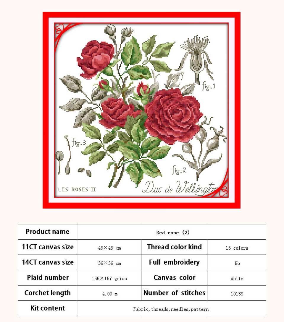 H520-红玫瑰(2)