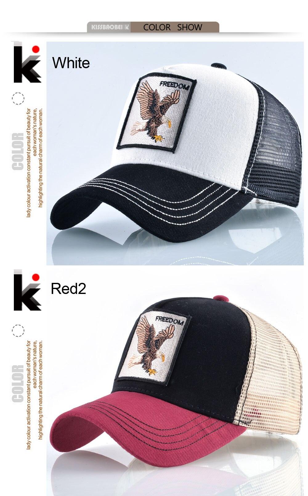 模板K_04