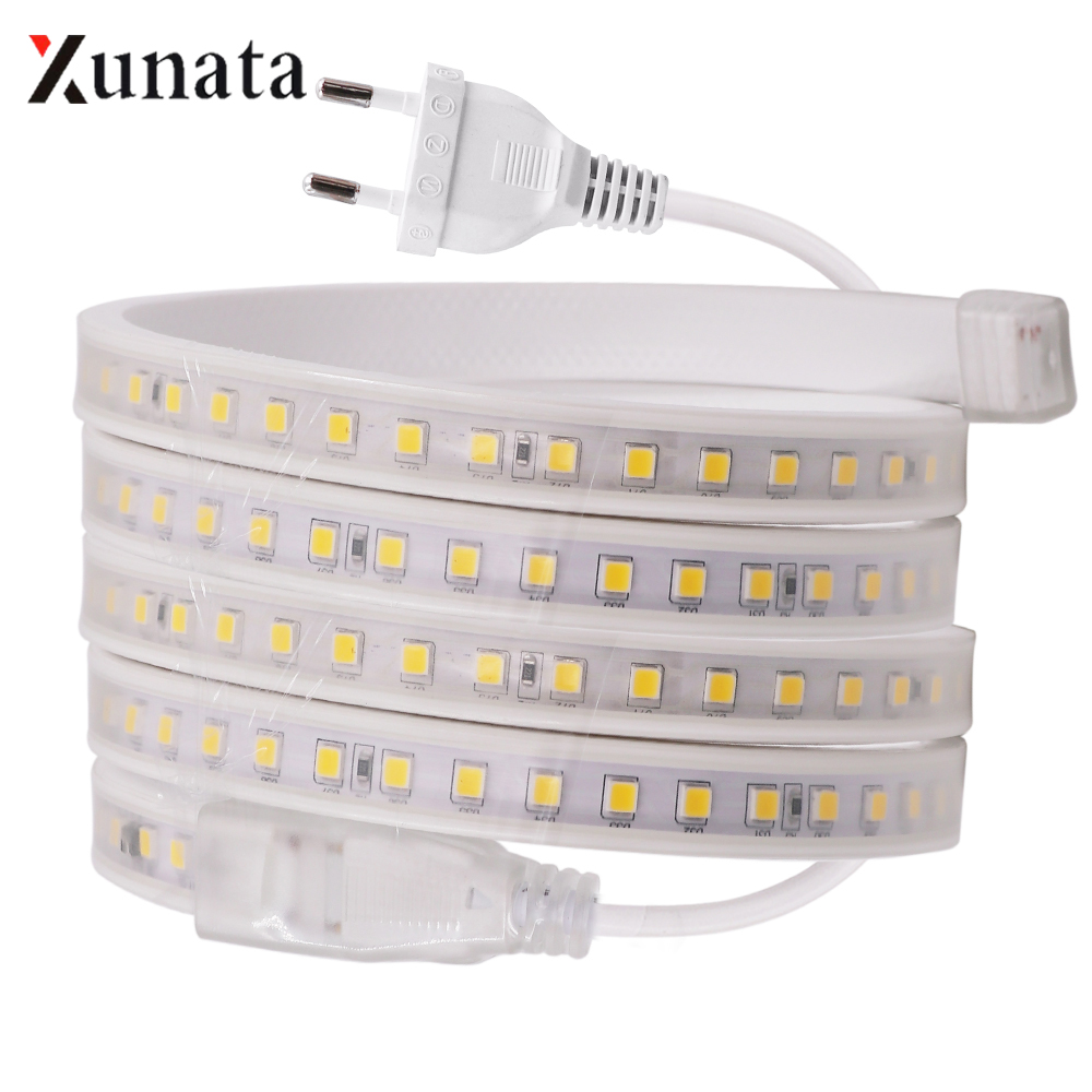 AC220V LED Strip Light Flexible LED Tape With IC Control SMD4040 100LEDs/M Waterproof LED Ribbon With EU Plug For Decoration