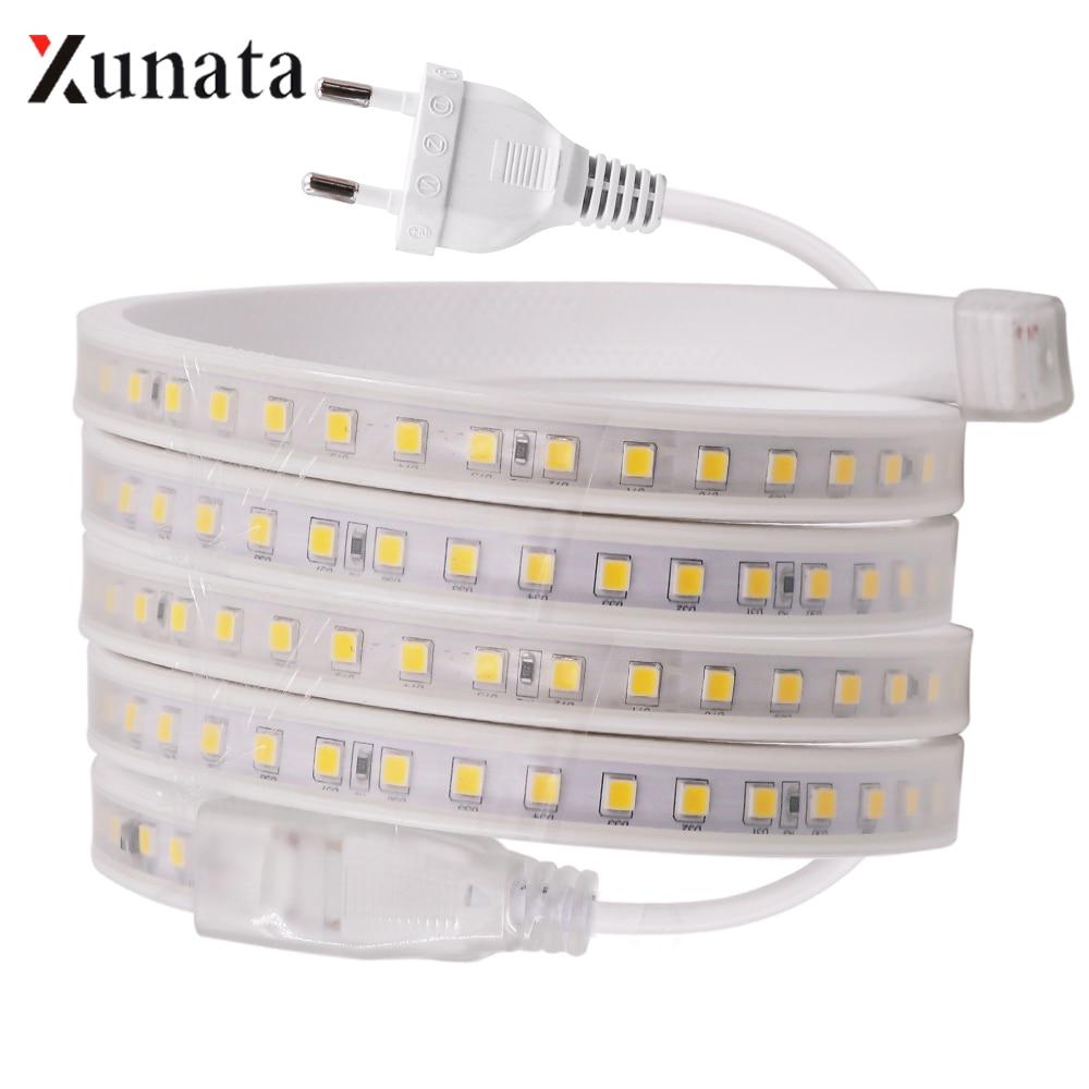 AC220V LED Strip Light Flexible LED Tape With IC Control SMD4040 100LEDs/M Waterproof LED Ribbon With EU Plug For Decoration
