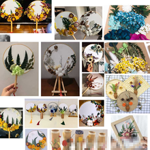Mixed Real Dried Flower For Resin Mold Making Real Flower For Epoxy Resin Pendant Necklace Jewelry Making Craft DIY Accessories