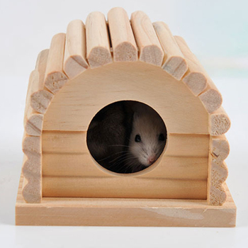 Cute Mini Hamster House 1