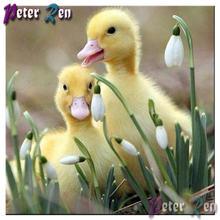 5d алмазная картина с животными две желтые утки и цветы квадратная