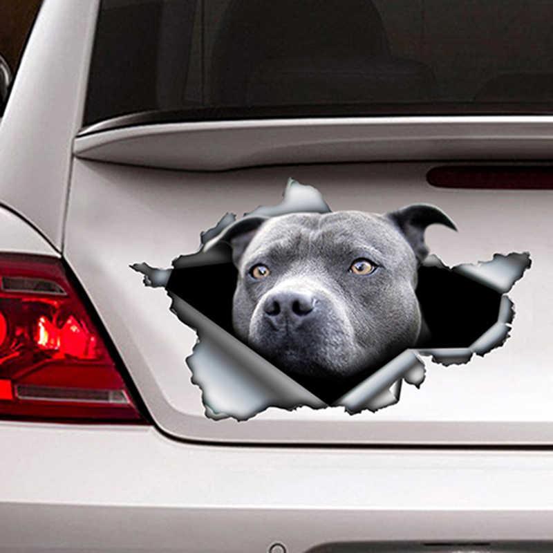 Azul pitbull etiqueta do carro rasgado decalque de metal reflexivo adesivo estilo do carro à prova dwaterproof água pet auto motocicletas decoração, 13cm x 7.8cm