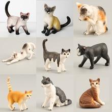 Toys Decoration Cat-Figures-Toy-Set Miniature Animal-Model Farm Party-Favors Realistic