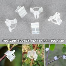 Ekonomiczne ogrodnicze klipsy do szczepienia ogród warzywny sztuczne kwiaty krzewy rośliny narzędzie ogrodnicze ds99 tanie tanio Z tworzywa sztucznego