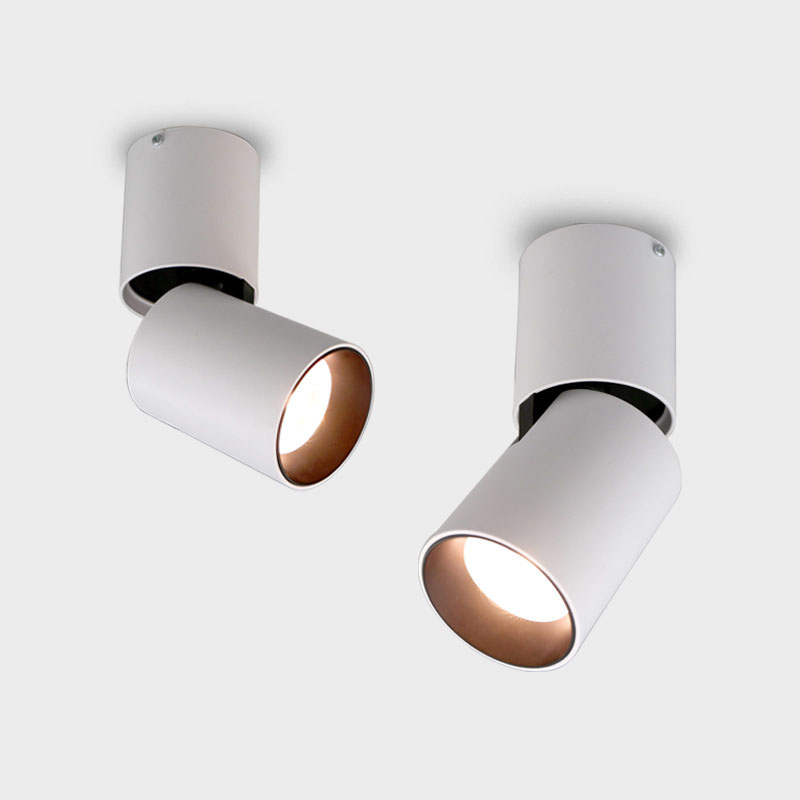 LED Ceiling light Surface mounted Dimmable Ceiling lamps Cylinder 10W 15W 20W for Bedroom Living room study office shop Studio|Ceiling Lights| |  - title=