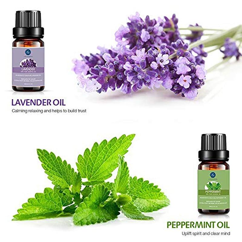Lagunamoon Pure Essential Oils 10ML 6pcs Gift Set Humidifier Aromatherapy Orange Lavender Mint Lemongrass Rosemary Frankincense