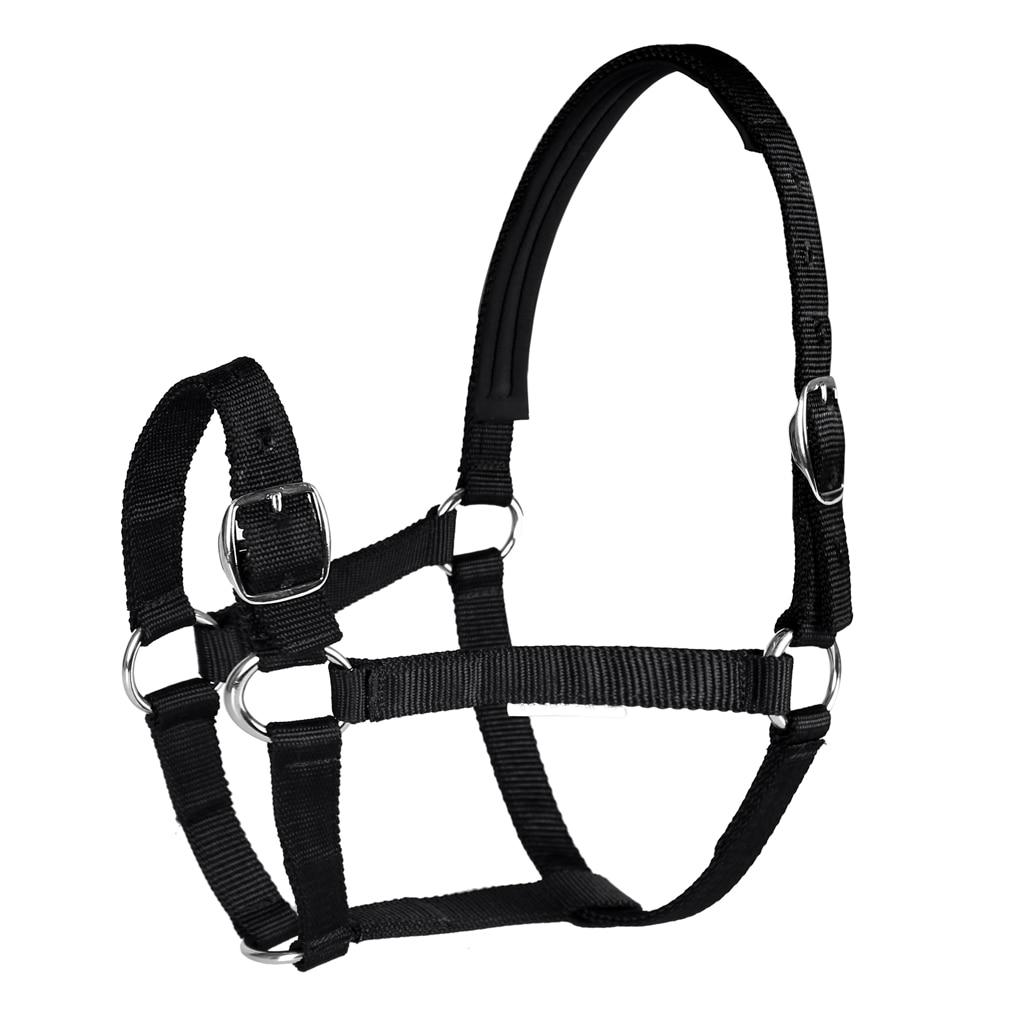 Adjustable Equestrian Western Horse Halter Fits 4.3ft - 5.4ft Horse Black/Blue/Red