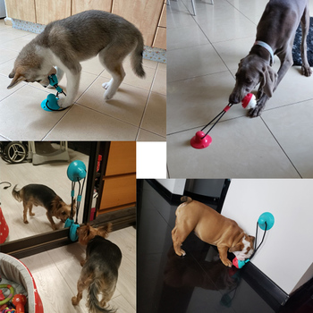 Pet Dog Toys Silicon Suction Cup Tug  6