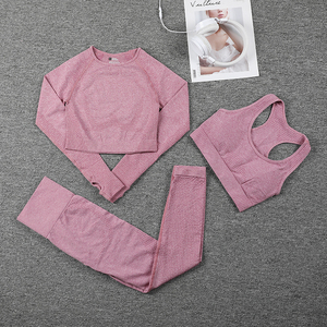 Women Seamless Sports Suits Fi