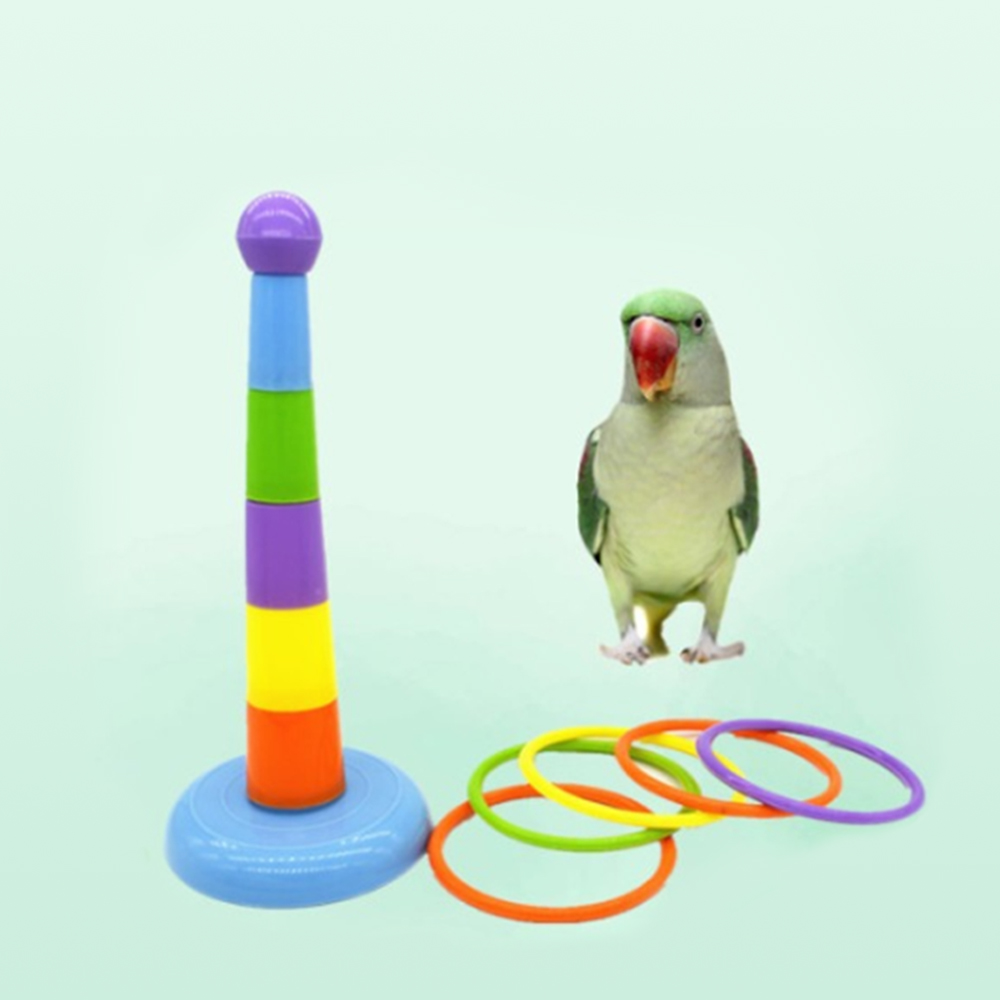 Funny Mini Ferrule Toy For Parrot Intelligence Developmental Game Colorful Rings Bird Activity Training Toy Drop Shipping N29
