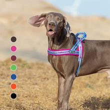 Светоотражающая шлейка для собак truelove легкая подъемная французского