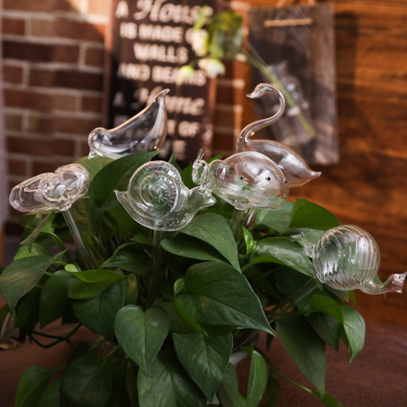 House Plants Flowers Automatic Water Feeder Auto Watering Devices Transparent Glass Water Feeder 6 Shape Self Watering Device