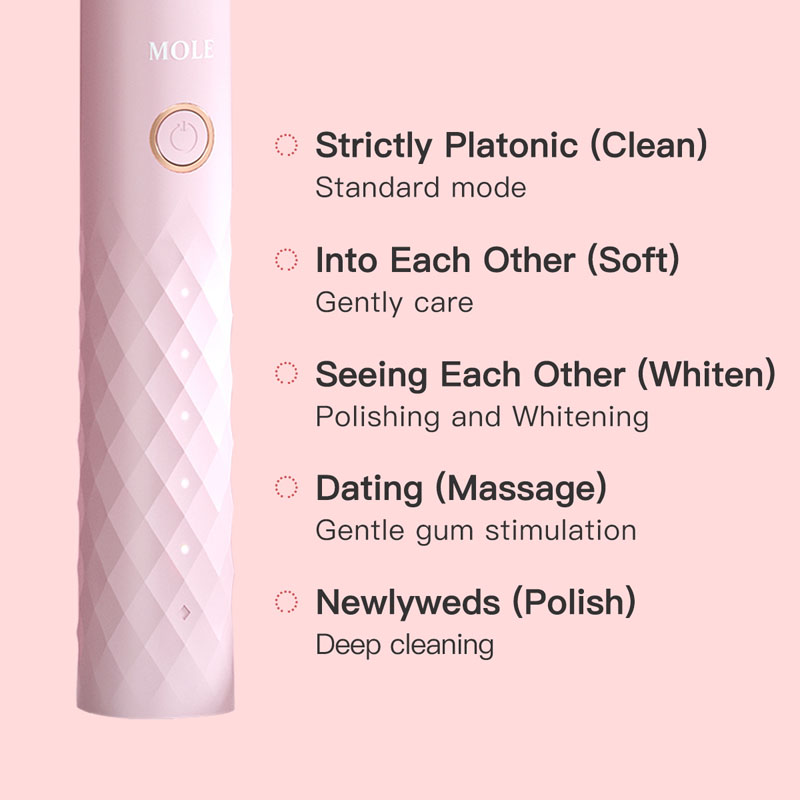 Pink&Green Electric Toothbrush Young Couple Rechargeable 5 Mode Timer Toothbrush IPX7 Waterproof Automatic Ultrasonic Brush