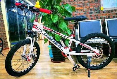"2 X 20/"" Bicycle Bike Cycle BMX /& Mountain Bikes Inner Tubes 2 PACK"