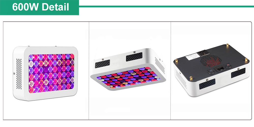LED Grow Light Grow Box Lamps For Grow Tents Hydroponic Indoor Plants Seed Veg Bloom Fruit Plants Lamp 2000W 1500W (6)