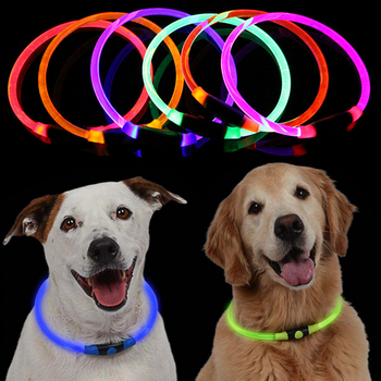 LED Dog Collar 1