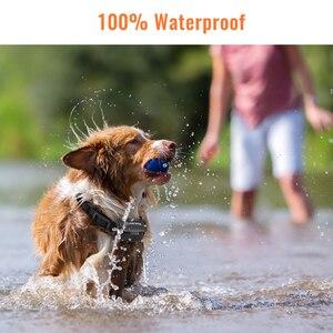 Image 4 - Petrainer Collar de entrenamiento eléctrico para perro, Control remoto para mascotas, para todos los tamaños, con vibración y sonido, 619A 1, 800m