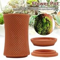 Terraplanterss-maceta de cerámica automática para patio trasero, succión de agua, para decoración del hogar y jardín