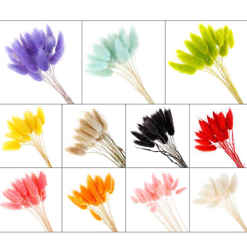 Suszone kwiaty lagurus sztuczne kwiaty ogon królika trawa bukiet fałszywy konijn staart gras ovatus vossenstaart boeket lange tr