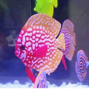 Luminous Simulation Fish Aquar