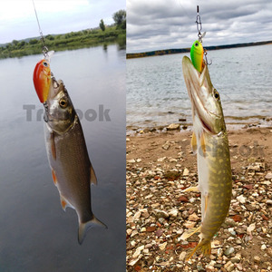 Image 5 - TREHOOK 36mm 3.6g 5 pièces Mini appâts de pêche à la manivelle appâts artificiels Topwater appâts durs méné nageurs Wobblers pêche à la carpe ensemble de leurres