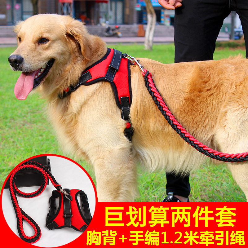 Rough Three-piece Set Dog Akita Lanyard Small Chain Dog Golden Retriever Traction Dog In Large Chest Dog Collar Dog An Extension