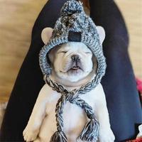 Winddicht Hut Hund Kinder Hüte Winter Warme Gestrickte Pet Hunde Hüte Weihnachten Kleidung Lustige Katze Hund Kleidung Zubehör Pet Kleid up