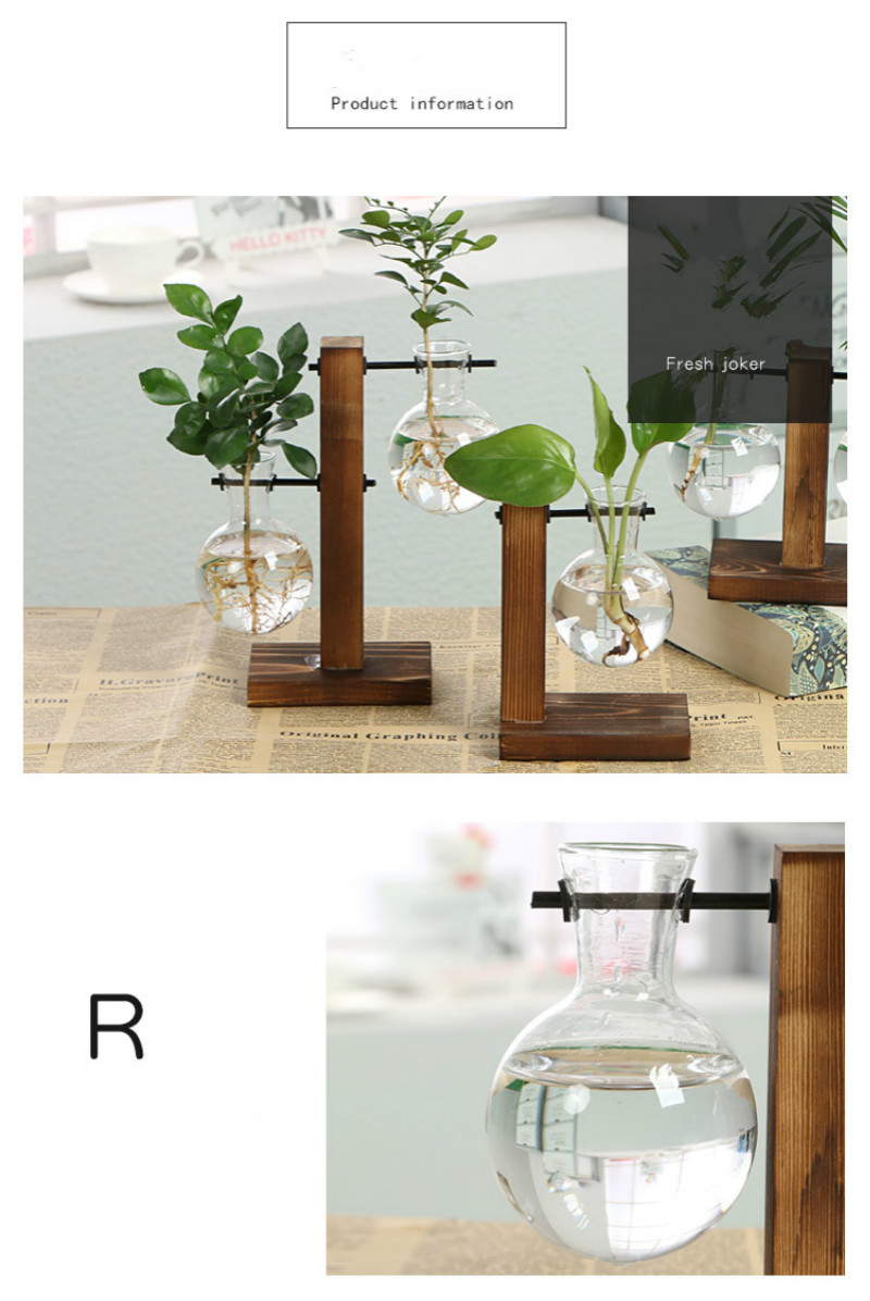 Clear Terrarium with Wooden Frame for Growing Hydroponic Indoor Ideal for Home/Office Decor 9