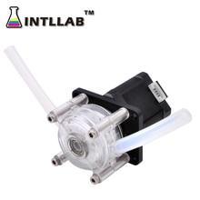INTLLAB DIY Peristaltic Pump Dosing Pump 12V DC, High Flowrate for Aquarium Lab Analytical
