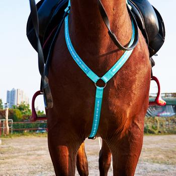 Wysoka widoczność LED koń napierśnik kołnierz koń pas na klatkę piersiową Tacks jazda konna wyposażenie ochronne jeździeckie 2020 tanie i dobre opinie CN (pochodzenie) LED Horse Breastplate Collar NYLON