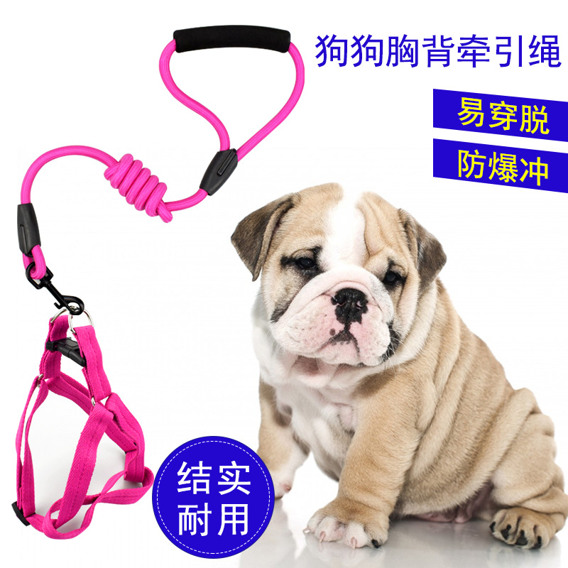 Plain Color Round Rope Chest And Back Pet Supplies Traction Belt Dog Collar Medium Large Dog Handle Dog Chain Proof Punch