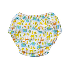 Reusable Adult Pocket Cloth Diaper Nappy Adjustable Training Pants For Adult Baby Girl, For Adult Baby Boy Age Play Costumes