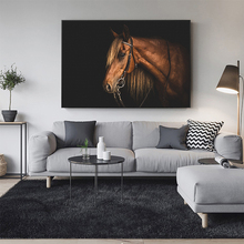 HD animals canvas painting black white horse wall printing art wholesale decoration for bed room no frame