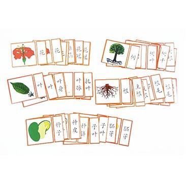 Montessori Teaching Aids China Science Publishing & Media Ltd.(cspm) Culture Natural Flora And Fauna ka pian ju of Accessories M
