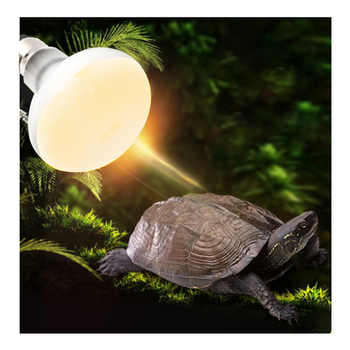 Lampa grzewcza dla zwierząt ceramiczna lampa grzewcza dla zwierząt domowych żarówka dla zwierząt domowych Brooder kurcząt lampa gadów 50W 60W 100W Box cieplejsze żarówki tanie i dobre opinie CN (pochodzenie) 6 godzin CHARGE Heating Lamp