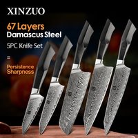 XINZUO 5 Pcs Kitchen Knife Set 67 layers Damascus Steel Santoku Cleaver Chef Knives with G10 Handle Professional Chef's Tools
